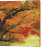 Fall At The Temple Wood Print