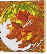 Fall Ball Wood Print