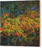 Fall Begins Wood Print