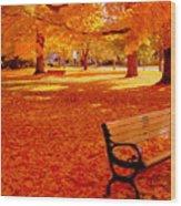 Fall Bench  Newburyport Ma Wood Print