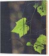 Fall Bokeh Wood Print
