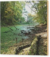 Fall By A River Wood Print