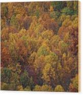 Fall Cluster Wood Print