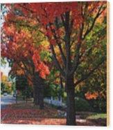 Fall Color 2010 No 5 Wood Print