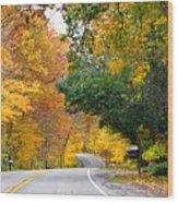 Fall Color Along Road  5643 Wood Print