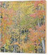 Fall Color At North Lake Wood Print