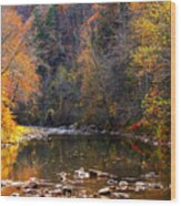 Fall Color Elk River Wood Print