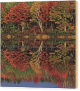 Fall Color Reflected In Thornton Lake Michigan Wood Print