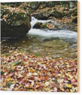 Fall Color Rushing Stream Wood Print