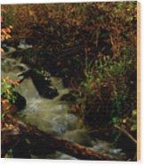 Fall Color Stream Wood Print