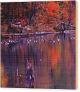 Fall Colors And Geese Wood Print