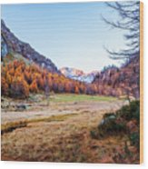 Fall Colors At Alpe Devero Wood Print