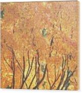 Fall Colors At Cape May Wood Print