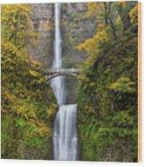 Fall Colors At Multnomah Falls Wood Print