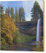 Fall Colors At South Falls Wood Print