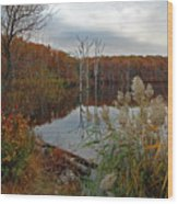 Fall Colors At The Reservoir Wood Print