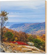 Fall Colors From Bear Mountain Wood Print