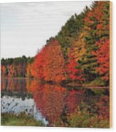 Fall Colors In Madbury Nh Wood Print