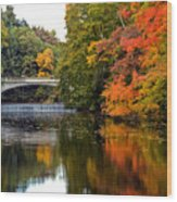 Fall Colors In New York State Wood Print