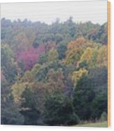 Fall Colors In Rockbridge County Wood Print