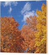 Fall Colors In Spokane Wood Print