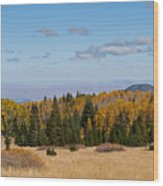 Fall Colors In The Inner Basin Wood Print