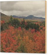 Fall Colors In White Mountains New Hampshire Wood Print