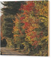 Fall Colors Line A New England Road Wood Print by Heather Perry
