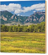 Fall Colors Of Boulder Colorado Wood Print
