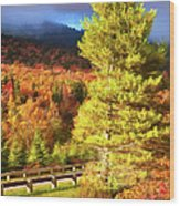 Fall Colors On Grandfather Mountain Ap Wood Print