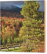 Fall Colors On Grandfather Mountain Wood Print