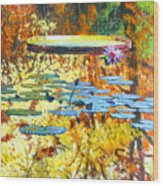 Fall Colors On The Lily Pond Wood Print