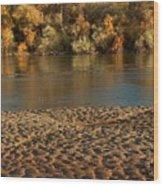 Fall Colors On The Rio Grande 1 Wood Print