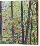 Fall Colour Medley Wood Print