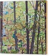 Fall Colour Medley Wood Print