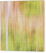Fall Colours Abstract, Oxtongue River, Algonquin Highlands Wood Print