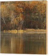 Fall Cove Wood Print