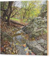Fall Creek View Wood Print