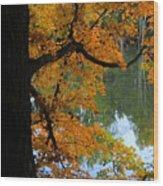 Fall Day At The Lake Wood Print