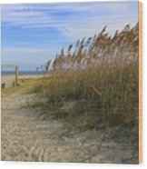Fall Day On Tybee Island Wood Print