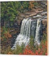 Fall Falls 2 Wood Print