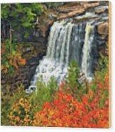 Fall Falls Wood Print