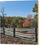Fall Fence Wood Print
