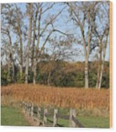 Fall Fence Wood Print