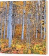 Fall Fiesta Wood Print