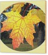 Fall Finery 2 Wood Print