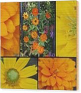 Fall Flowers Wood Print
