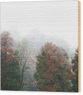 Fall Fog Wood Print