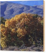 Fall Foliage And Hills, Carson City Wood Print