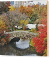 Fall Foliage In Central Park Wood Print